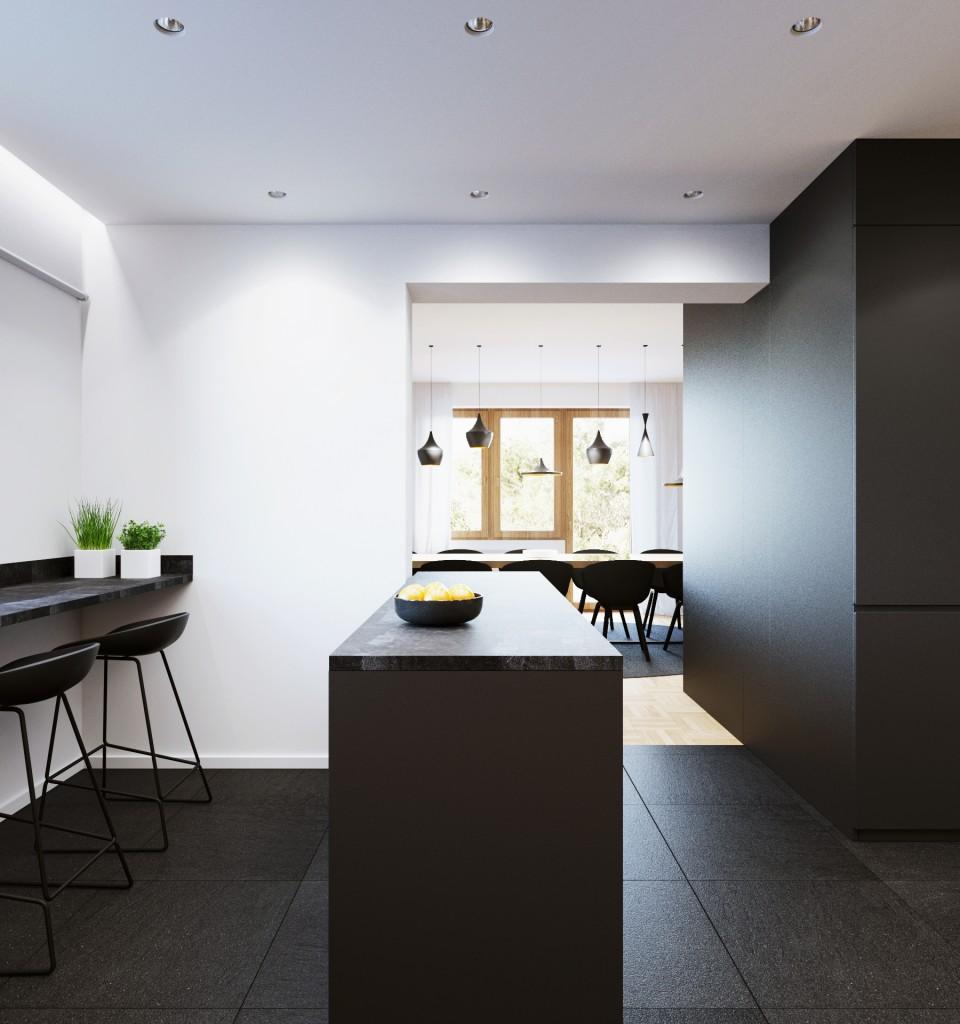 081-architekci-projekt-wnetrz-mieszkanie-ml-klementowice-kuchnia_05