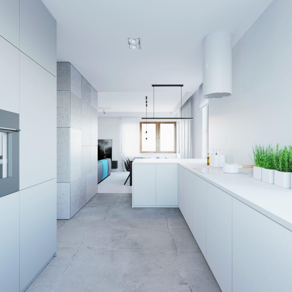081-architekci-projekt-wnetrz-mieszkanie-ak-lublin-kuchnia_01