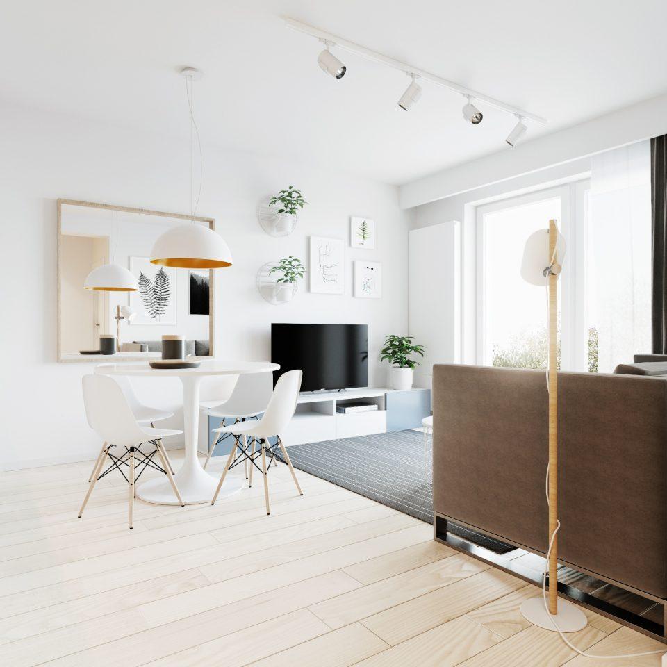 081-architekci-projekt-wnetrz-mieszkanie-gor-wroclaw-salon_01