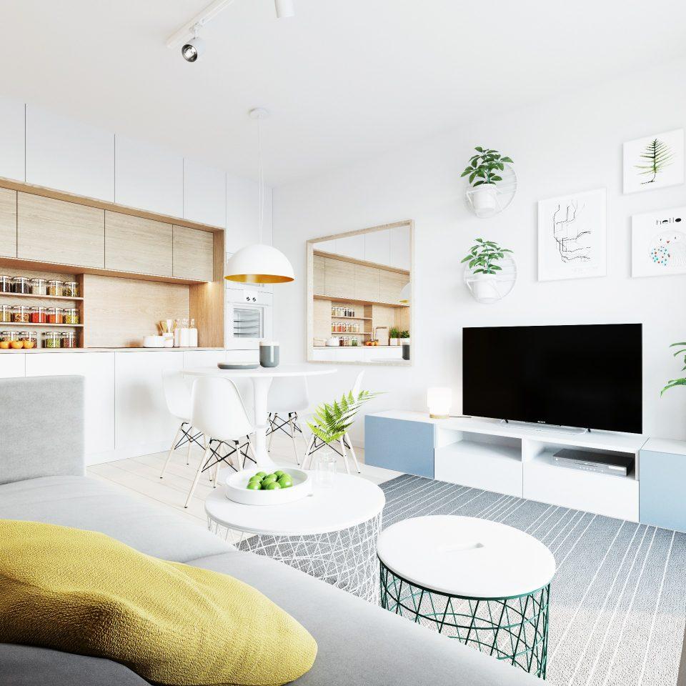 081-architekci-projekt-wnetrz-mieszkanie-gor-wroclaw-salon_03