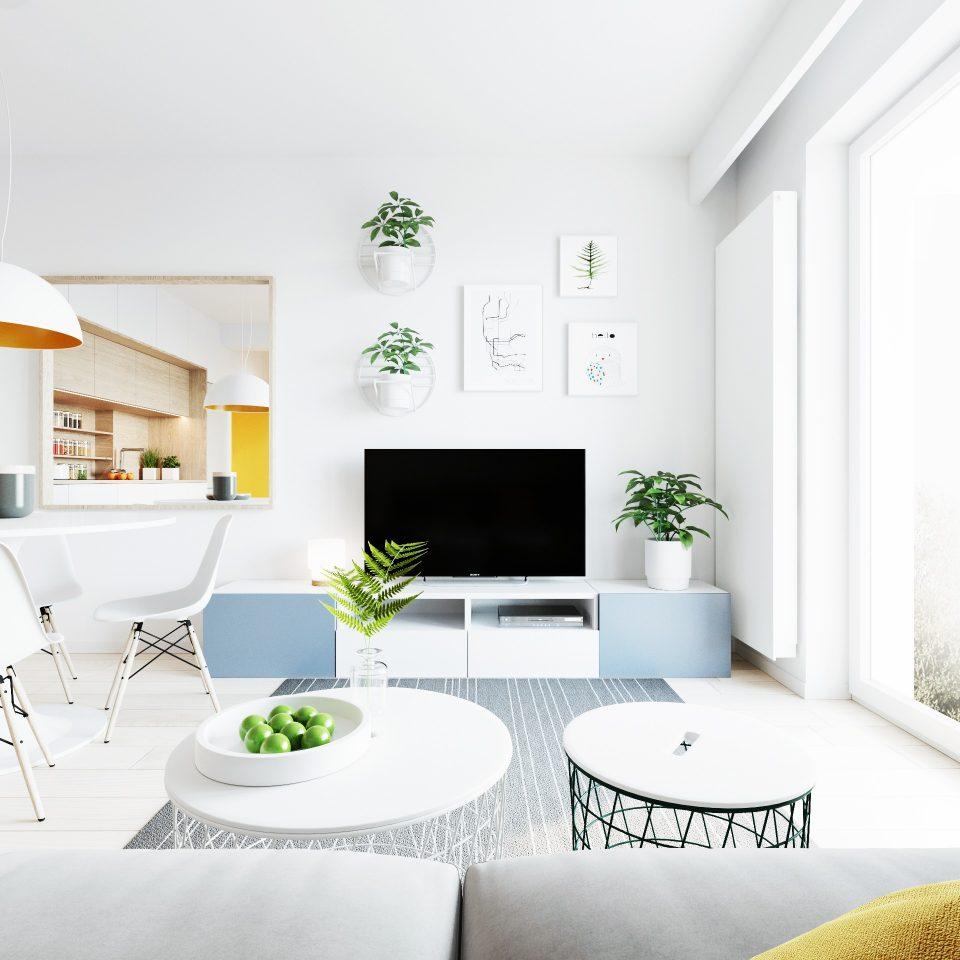 081-architekci-projekt-wnetrz-mieszkanie-gor-wroclaw-salon_04